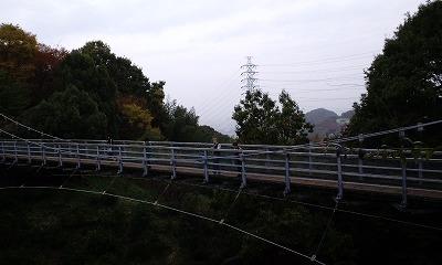 ベイス 森の宝島 004.jpg