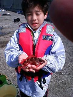 和歌山北港海釣り公園 004.jpg