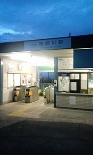 再び服部川へ 001.jpg