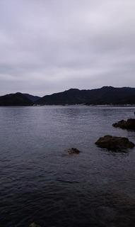 和歌山と花園 001.jpg