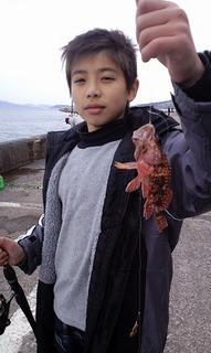 和歌山北港海釣り公園(わかめ) 005.jpg