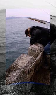 和歌山北港海釣り公園(わかめ) 006.jpg